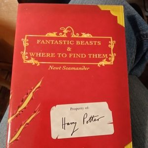Harry potter fantastic beasts &where to find them